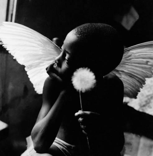 Angelic boy holding a flower