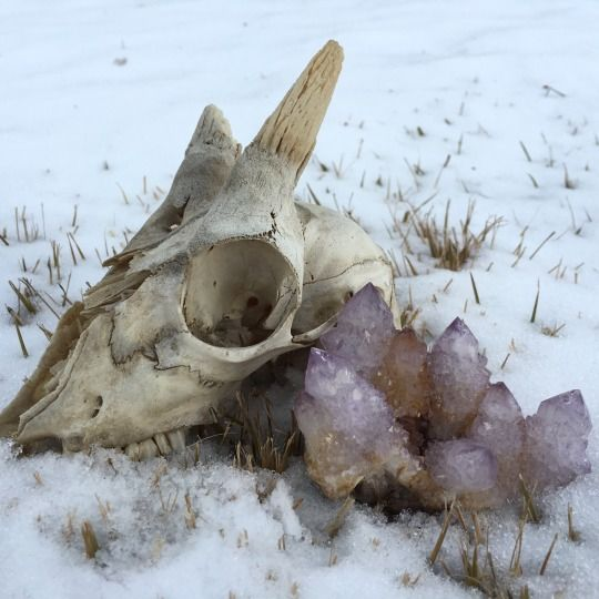 skull crystal