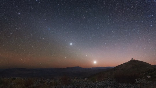 fixed star regulus astrology