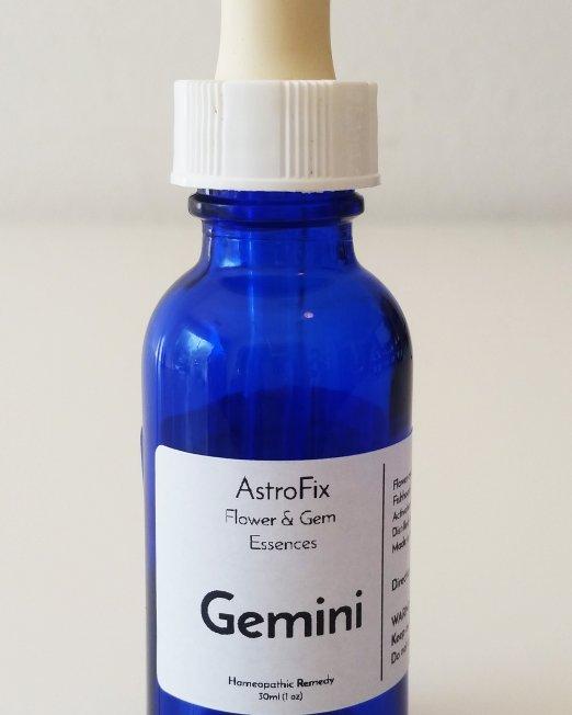Gemini houses in astrology astrofix for Gemini homes