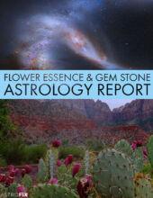 ASTROFIX FLOWER ESSENCE AND GEM STONE ASTROFIX ASTROLOGY REPORT