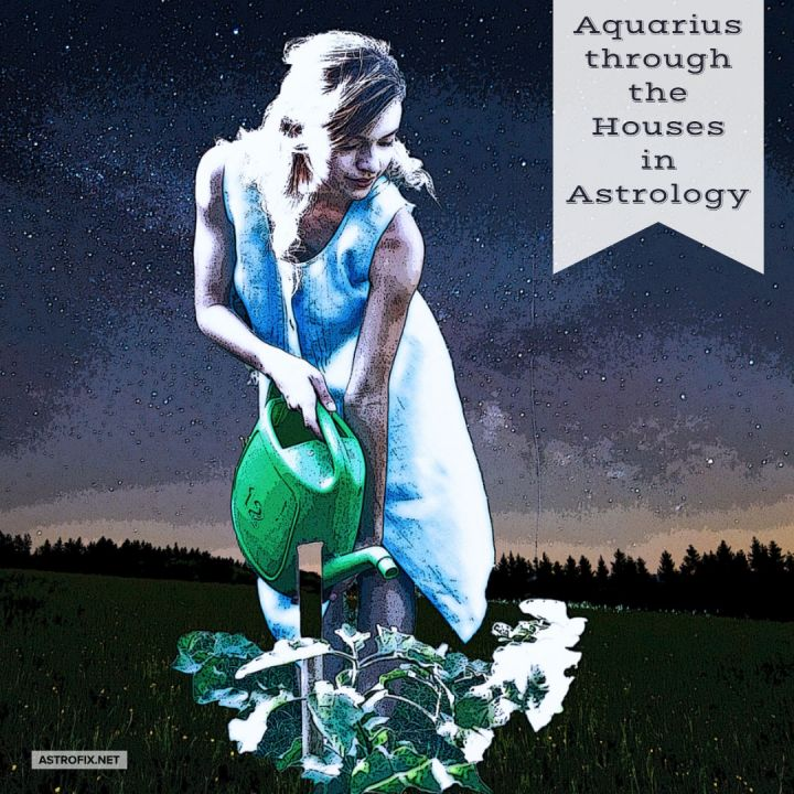 Aquarius through the Houses in Astrology – AstroFix