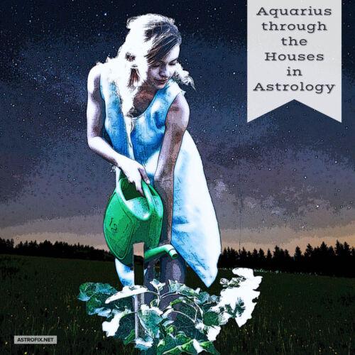 Aquarius through the Houses in Astrology ASTROFIX