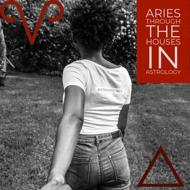 Aries through the Houses in Astrology_image