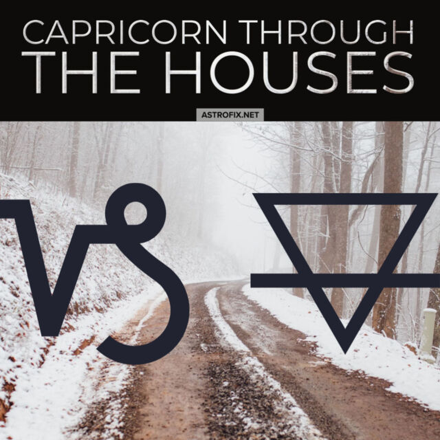 AstroFix Capricorn through the houses astrology series astrofix.net