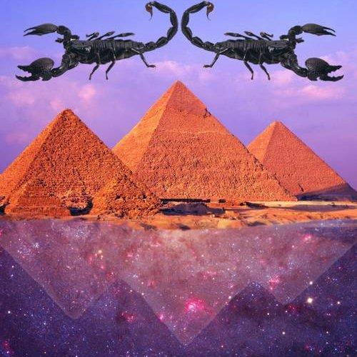 Scorpio Houses in Astrology – AstroFix
