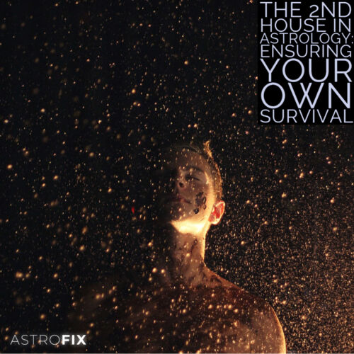 The 2nd House in Astrology_ Ensuring Your Own Survival AstroFix (1)