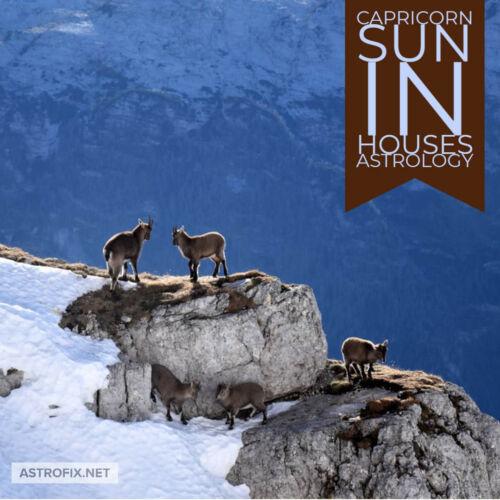 Capricorn Sun in Houses Astrology ASTROFIX