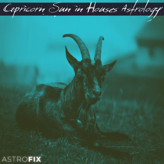 Capricorn Sun in Houses Astrology AstroFix