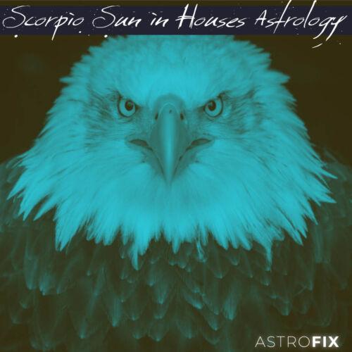 Scorpio Sun in Houses Astrology AstroFix.net